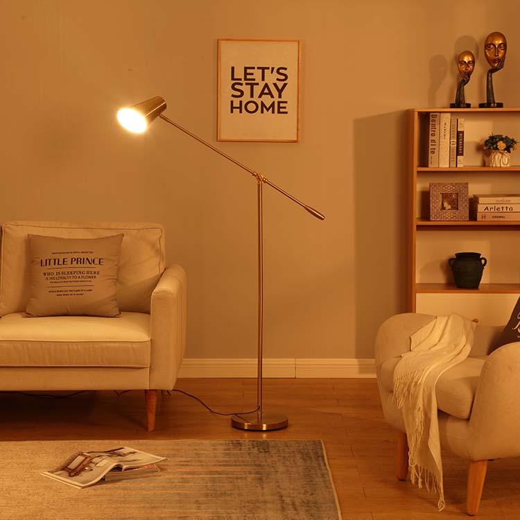 Ajustable Height  Metal Floor Lamp 4
