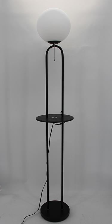 Black Metal Floor Lamp-2