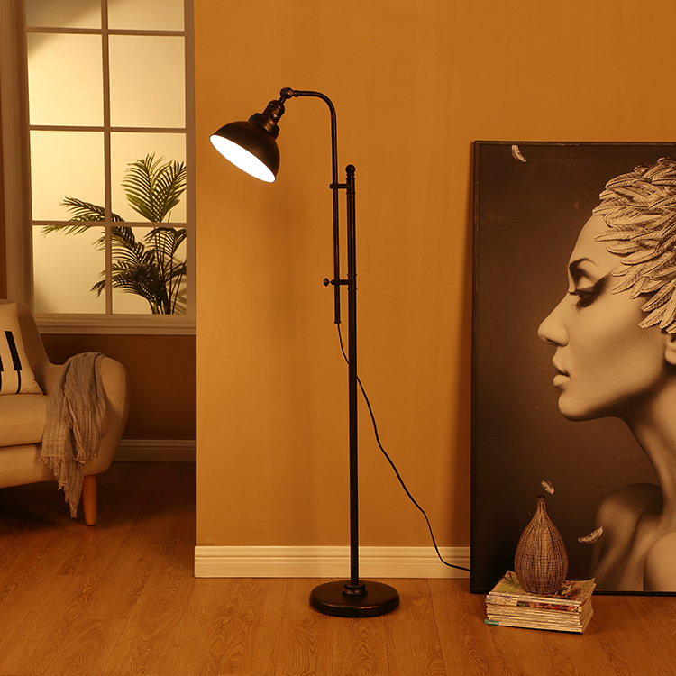 Black and Gold Floor Lamp 6