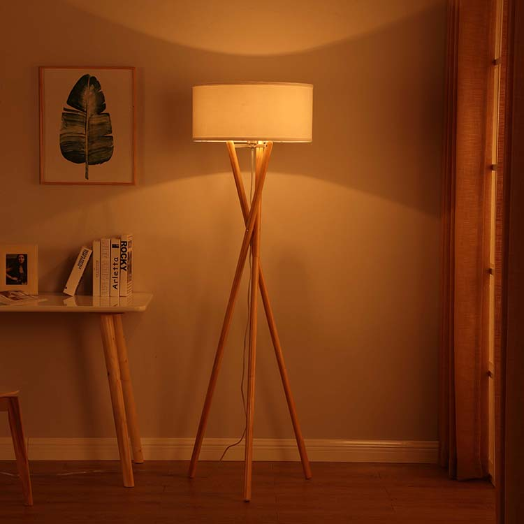 Euro Style Collection  Tripod Floor Lamp 3