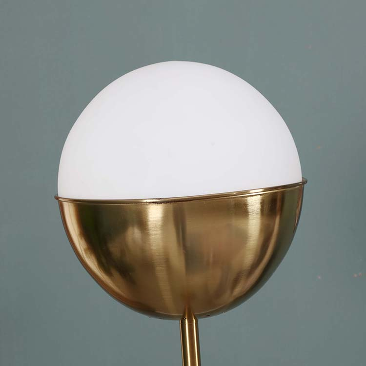 Modern Glass shade Brass LED Floor Lamp details 1